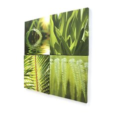 Graham and Brown Leaf Quad4 Piece Photographic Print on Canvas Set