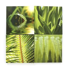 Graham & Brown 4 Piece Photographic Print on Canvas Set