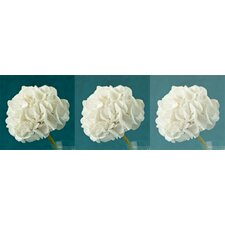 Hydrangea Trio Canvas (Set of 3)