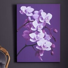 Orchid Canvas Wall Art