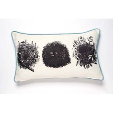 Curiosities Oology Pillow