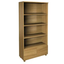 Betria Contemporary Livingroom Bookcase