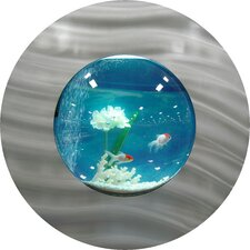 Round Bubble Aquarium Tank