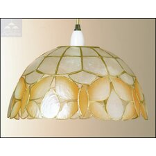 Shell Wild Butterfly Shade