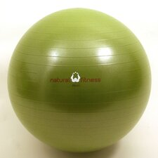 Burst Resistant Exercise Ball