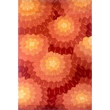 New Wave Red Area Rug