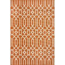 Baja Orange Indoor/Outdoor Rug
