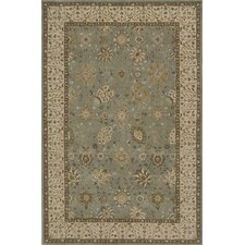 Zarin Brown Area Rug