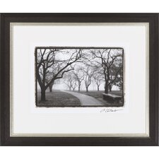 Foggy Morning Walk on FAP by Vision Studio Framed Photographic Print