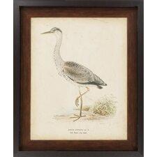 Embellished Vintage Heron II by Vision Studio Framed Graphic Art
