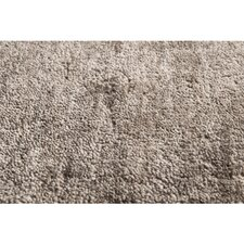 Haize Dark Taupe Solid Area Rug