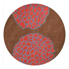 Artist Studio Brown/Sky Red Rug
