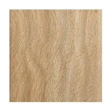 Coastal Living 12mm Oak Laminate in Sand Dollar