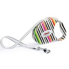 Fashion Retractable Tape Dog Leash in Milano