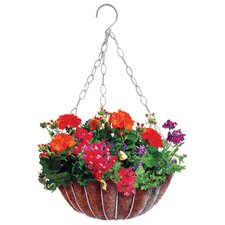 Classix Round Hanging Planter (Set of 12)