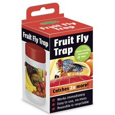 Single Fruit Fly Trap