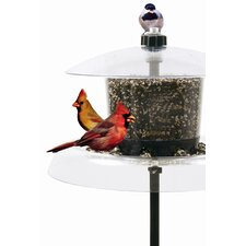 Jagunda Squirrel-Proof Bird Feeder with Auger