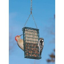 Suet Double Bird Feeder