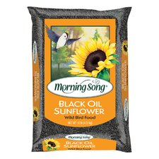 5 lbs Morning Song Black Oil Sunflower