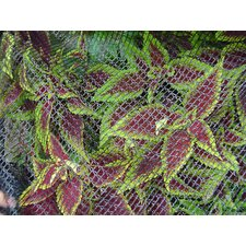 "0.25"" Bird Barricade Deluxe Netting"