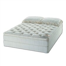 Marquis Water Mattress Set