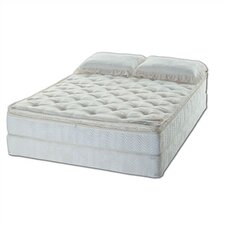 <strong>American National Manufacturing</strong> Essence Water Mattress Set