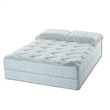 <strong>American National Manufacturing</strong> Salerno Water Mattress Set