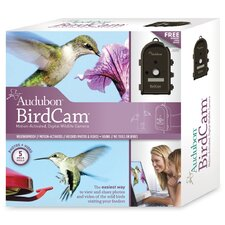 Audubon BirdCam in Dark Brown