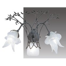 Cleofe 3 Light Wall Sconce