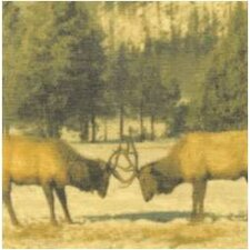 Moose Giclee Painting Print on Canvas