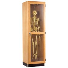 Hanging Skeleton Cabinet