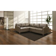 Adeen 2 Piece Sectional
