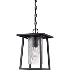Lodge 1 Light Outdoor Hanging Lantern
