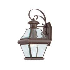 Rutledge Outdoor Wall Lantern