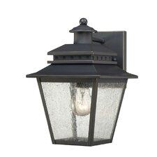Carson 1 Light Outdoor Wall Lantern