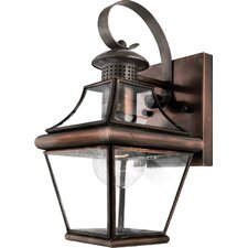 Carleton 1 Light Outdoor Wall Lantern