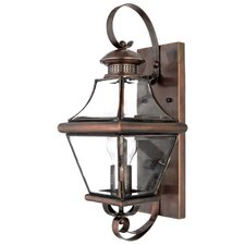 Carleton Oula 1 Light Outdoor Wall Lantern