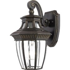 <strong>Quoizel</strong> Georgetown 1 Light Outdoor Wall Lantern