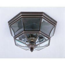 <strong>Quoizel</strong> Newbury 3 Light Outdoor Flush Mount