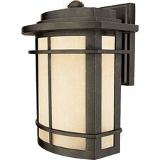 <strong>Quoizel</strong> Galen 1 Light Outdoor Wall Lantern