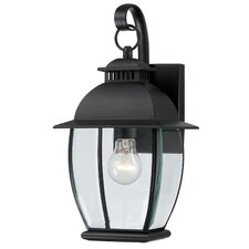 <strong>Quoizel</strong> Bain 1 Light Outdoor Wall Lantern