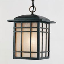 Hillcrest 1 Light Outdoor Hanging Lantern