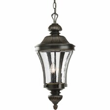 <strong>Progress Lighting</strong> Thomasville Nottington 3 Light Outdoor Hanging Lantern