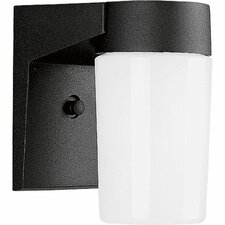 Incandescent 1 Light Outdoor Wall Lantern