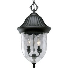 Coventry 2 Light Hanging Lantern
