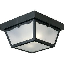 <strong>Progress Lighting</strong> Weather Resistant 2 Light Outdoor Flush Mount