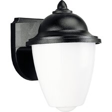 <strong>Progress Lighting</strong> 1 Light Outdoor Wall Lantern