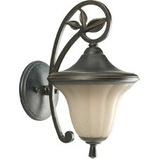 Le Jardin 1 Light Outdoor Wall Lantern