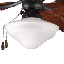 One Light Indoor or Outdoor Ceiling Fan Light Kit