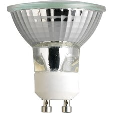 50W Clear Halogen Light Bulb